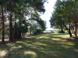 Foto Campo en Venta en  Concordia ,  Entre Rios  1.000 metros de la autovía RN 14