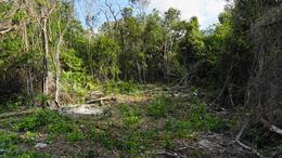 Thumbnail picture Land in Sale in  Puerto Morelos,  Cancún  Puerto Morelos