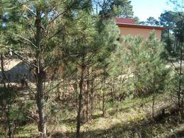 Foto Terreno en Venta en  Alamos,  Pinamar  ESPARTILLO E/Sotavento y Av. Tres Carabelas