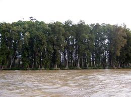 Foto Campo en Venta en  Puerto De Escobar,  Escobar  Paraná de Las Palmas