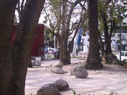Foto Departamento en Alquiler temporario en  Olivos,  Vicente Lopez  Rawson al 2400