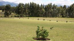 Foto Terreno en Venta en  Centro de Tabacundo,  Tabacundo  Via Lagunas de Mojanda