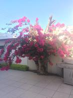 Foto Casa en Venta en  Del Valle,  San Pedro Garza Garcia  CASA EN VENTA EN COLONIA DEL VALLE ZONA LOS RIOS  SAN PEDRO GARZA GARCIA NUEVO LEON