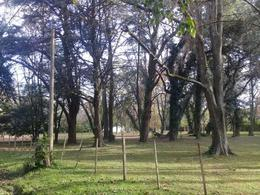 Foto Terreno en Venta en  Berazategui,  Berazategui  Calle 775 Estancia San Juan Pereyra