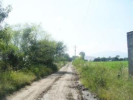 Foto Terreno en Venta en  Congregacion San José de La Laja,  Tequisquiapan  Bonita parcela de riego por goteo