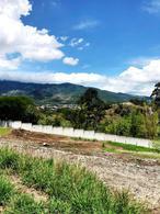 Foto Terreno en Venta en  Pozos,  Santa Ana  Lote en Santa Ana Villa Real