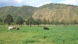 Foto Campo en Venta en  Santa Clara,  Santa Barbara  Santa Clara - Jujuy - 2.800 ha