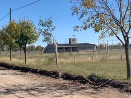 Foto Terreno en Venta en  Viejo Algarrobo,  Cordoba Capital  Camino San Carlos km 7