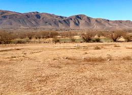 Foto Terreno en Venta en  Tafi Del Valle ,  Tucumán  Los Castaños