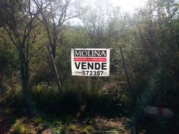 Foto Terreno en Venta en  Villa De Las Rosas,  San Javier  VENDE LOTES BARRANCA DE LOS LOROS