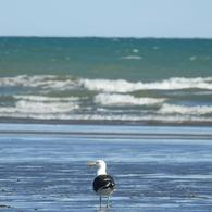 Foto Terreno en Venta en  Sierra Grande,  San Antonio  60 CUOTAS EN PESOS - Playas Doradas