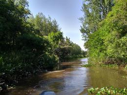 Foto Quinta en Venta en  Zona Delta San Fernando,  San Fernando  Arroyo Toledo