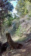 Foto Campo en Venta en  Epuyen,  Cushamen  Ruta 70