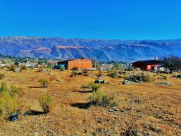 Foto Terreno en Venta en  Tafi Del Valle ,  Tucumán  TERRENO EN VENTA El Mollar - Lote 494 m2