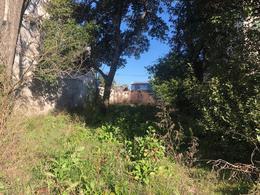 Foto Terreno en Venta   Alquiler en  Monte Grande,  Esteban Echeverria  EDUARDO ARANA 400