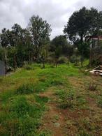 Foto Terreno en Venta en  Santo Tomas Ajusco,  Tlalpan  se vende terreno en picacho ajusco