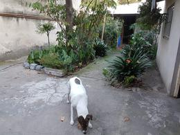 Foto Casa en Venta en  Lanús Oeste,  Lanús  Libertad al 3800