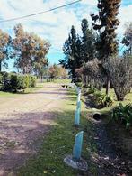 Foto Campo en Venta en  San Vicente ,  G.B.A. Zona Sur  Ruta 6, km 47