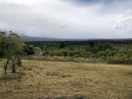 Foto Casa en Venta en  Trevelin,  Futaleufu  Callejon Williams