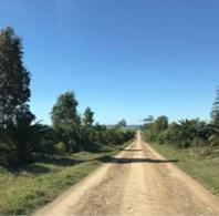 Foto Campo en Venta en  Rocha ,  Rocha          A 36 km de la ciudad de Rocha, sobre la ruta nacional 9