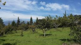 Foto Terreno en Venta en  Tumbaco,  Quito  Tumbaco - Collaqui, Hermoso Terreno Plano en Venta, 7.000 m2