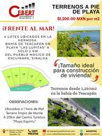 """Foto Terreno en Venta en  Pueblo Teacapan,  Escuinapa  LOTES FRENTE AL MAR EN """"PLAYA LAS LUPITAS"""" TEACAPAN"""