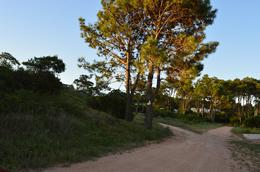 Foto Terreno en Venta en  Punta Ballena ,  Maldonado  Calle Lago de Joux