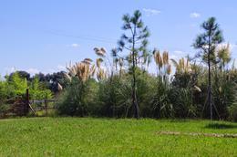 Foto Terreno en Venta en  Haras el Malacate,  Countries/B.Cerrado (Exaltación)  Haras El Malacate