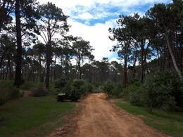 Foto Terreno en Venta en  Montoya,  La Barra  La Reserva 342