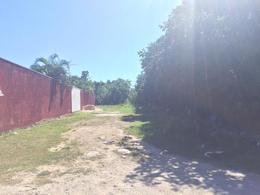 Foto Terreno en Venta en  Alamos I,  Cancún  alamos 2 calle acacia