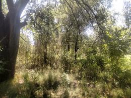 Foto Campo en Venta en  Alta Gracia,  Santa Maria  Campo en Alta Gracia