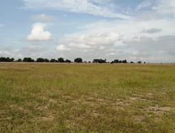Foto Terreno en Venta en  El Llano ,  Aguascalientes  Terreno en Venta en El Llano, Ags.