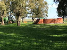 Foto Campo en Venta en  Colonia Santa Teresa,  Guatrache  Colonia Santa Teresa