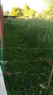 Foto Terreno en Venta en  Chascomus,  Chascomus  Chascomus