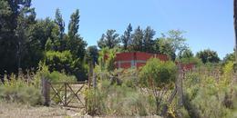 Foto thumbnail Terreno en Venta en  Parada Robles,  Exaltacion De La Cruz  Fresno 1000