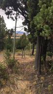 Foto Terreno en Venta en  Trevelin,  Futaleufu  Fracción 80 del Lote 20