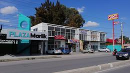 Foto Local en Renta en  Zona Industrial,  San Luis Potosí  LOCALES EN RENTA EN PLAZA , SOBRE AVENIDA INDUSTRIAS, SAN LUIS POTOSÍ