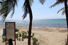 Foto Terreno en Venta en  Solidaridad,  Playa del Carmen  Playa del Carmen