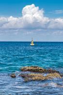 Foto Local en Renta en  Cozumel ,  Quintana Roo  BARU COZUMEL
