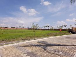 Foto Terreno en Venta en  Fraccionamiento Lomas de  Angelópolis,  San Andrés Cholula  Terreno en Venta en Lomas de Angelopolis San Andres Cholula Puebla