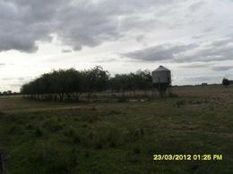 Foto Campo en Venta en  Coronel Brandsen,  Coronel Brandsen  3.4 HA. BRANDSEN