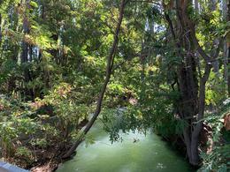 Foto Chacra en Venta en  Trelew ,  Chubut  Chacras con costa de rio