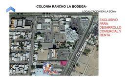 Foto Terreno en Renta en  Rancho La Bodega,  Mexicali  Rancho La Bodega