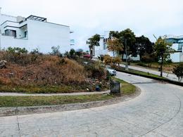 Thumbnail picture Land in Sale in  Xalapa ,  Veracruz  Xalapa