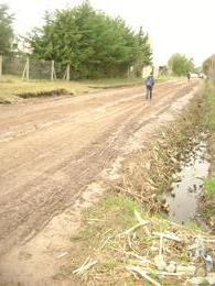 Foto thumbnail Terreno en Venta en  La Plata,  La Plata  Calle 12 entre 662 Y 663 - Sicardi