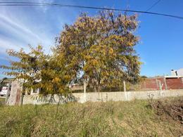 Foto Terreno en Venta en  La Plata ,  G.B.A. Zona Sur  47 Entre 151 y 152
