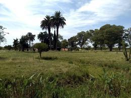 Foto Casa en Venta en  Villa Elisa,  Colon  Ruta al 100