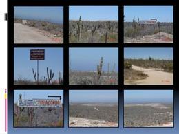 Foto Terreno en Venta en  La Paz,  La Paz  San Carlos La Paz, Baja California Sur