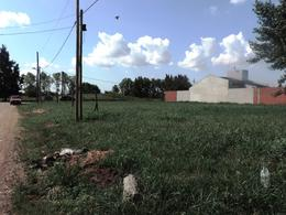 Foto Terreno en Venta en  Ezeiza ,  G.B.A. Zona Sur  Suipacha al 1300