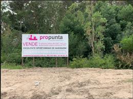 Foto Terreno en Venta en  Rincón del Indio,  Punta del Este  Rincón del Indio